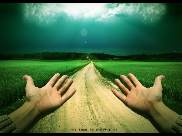 Provider's Path
